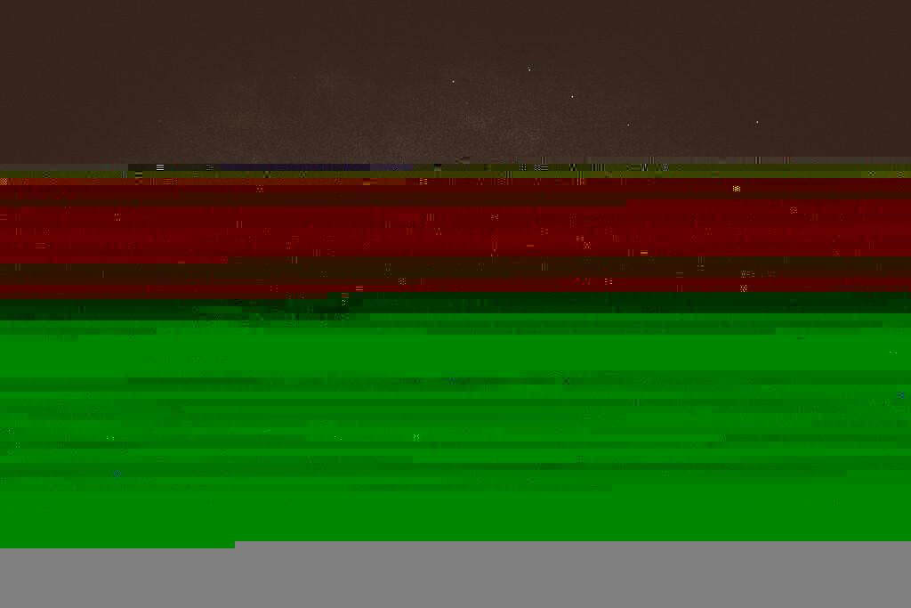 mapperley-farm-punk-wedding-elvis-94123